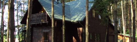 Wysokiej jakości domy z drewna są domeną firmy DOMTOR